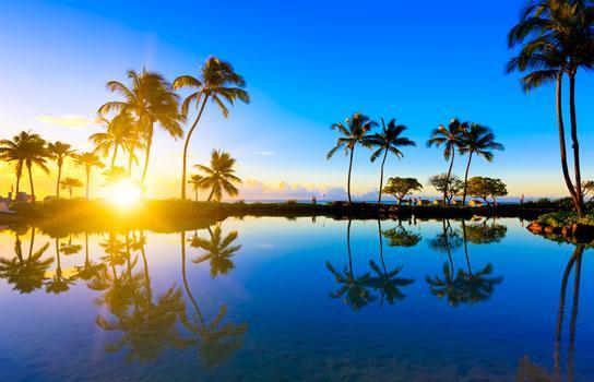 AAA Vacation Deals