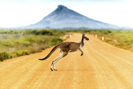AAA Vacations - Australia