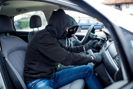 Car theft duo