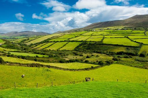 Hertz International - Ireland